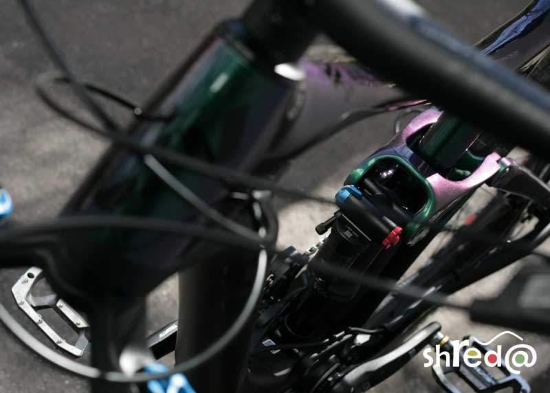 liv hail advanced mountain bike rear macro photography